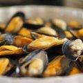 リヨンでムール貝のムールフリットがおいしいレストラン一覧