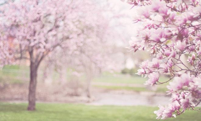 リヨン旅行 - 4月の天気・気温・服装